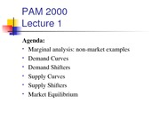 PAM_2000_Spring_2009_Lecture_1