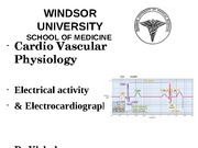 LE 11 Electrical activity of the heart