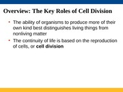 Lectures 22 & 23 Cell Cycle