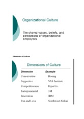 8. Organizational Culture and Case Shaping Spaarbeleg