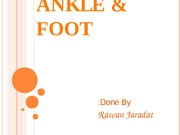 9 - Ankle and Foot - D3