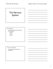 Chapter 03 %28part II%29 - The nervous system