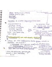 Evolution Notes 1