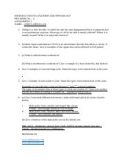 AAP Assignement 1 .docx