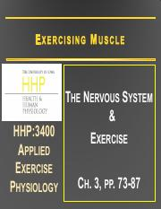 2 Nervous System & Exercise