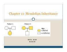 BIOL 1010 Chapter 11 Mendelian Patterns of Inheritance students