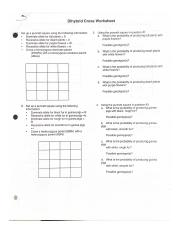 Dihybrid Cross Worksheet.pdf