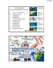 Section 1-Introduction to Biology.pdf