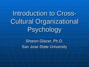 Introduction to Cross-Cultural Organizational Psychology