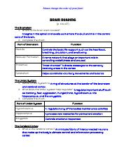 Elizabeth Vang - Brain Reading - Google Docs.pdf