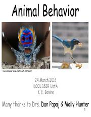 Lecture 17 - Animal Behavior.pdf