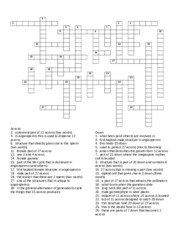 Plant form and function-crossword (1) - 36 Transport powered by ...