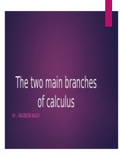 The two main branches of calculus.pptx