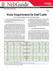 Water Requirements for Beef Cattle-1