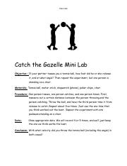 Catch the Gazelle Lab.pdf