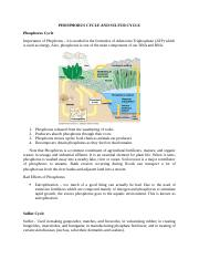SY16 2Q ESE150 C5 G5 (PHOSPHORUS AND SULFUR CYCLE)