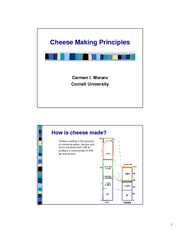 Lecture_20___cheese_making__1_
