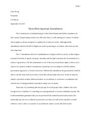 Franzman_Three_Most_Important_Amendments_Essay_Ese.docx