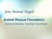 Powerpoint Animal Rescue Foundation cit 101