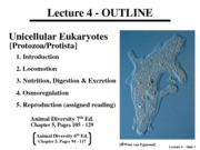 Lecture 4 - Unicellular Eukaryotes -220915