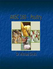 AS 160 - Poultry.ppt