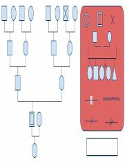 Family-Tree-Genogram-Symbols-Template.doc