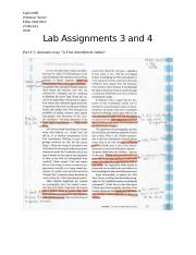 Lab Assignments 3 and 4 - Tayler Elliff.docx