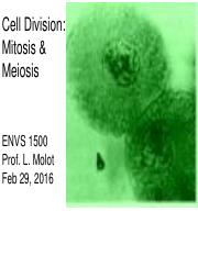 1500 Lecture 8W Mitosis  Meiosis.pdf