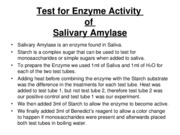 Part D Test for Enzyme Activity in microsoft 97-03