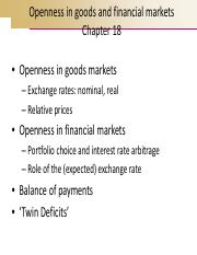 Section Va - openness in goods and financial markets - chap 18.pdf
