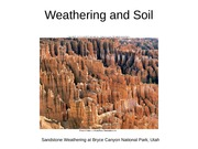 6._Weathering_and_soil_White