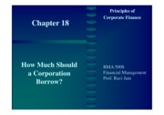 18. How Much Should a Corporation Borrow