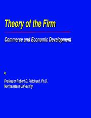 Theory of the Firm.pdf