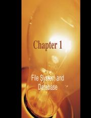 Chapter 1 File System and Database
