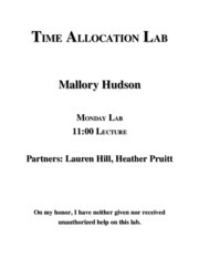 Mal's Mallard Time Allocation