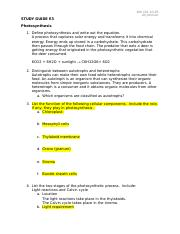 Study Guide E3 - Photosynthesis.docx