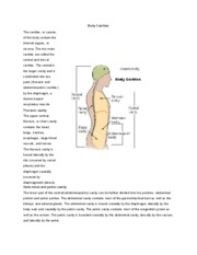 ANATOMY MIDTERM STUDY GUIDE - Course Hero