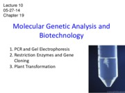 Lecture+10+handout+-+molecular+genetic+analysis+05-23-14