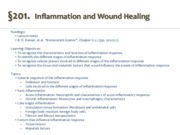 201_Inflammation and Wound Healing