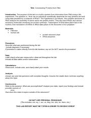 lab report template 07.docx
