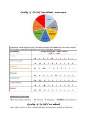 Quality of Life Self Care Wheel - Assessment.completed.docx