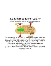 photosynthesis-6-light-independent-reaction-2-638.jpg
