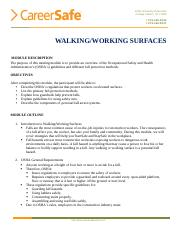 Walking Working.pdf