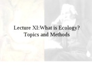 Lecture XI - What is Ecology