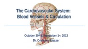 Chapter 22- Vessels and Circulation I