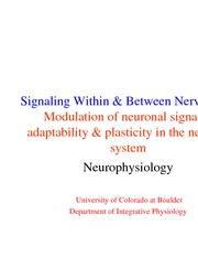 8 - Modulation of Neural Signals – adaptability & plasticity in the nervous system - lec