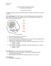 Study Guide for Lecture 4