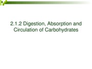20.1.2 Digestion of Carbohydrates-R