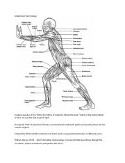 2.Anatomical Terminology.docx