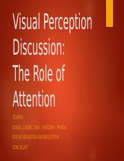 Visual Perception Discussionteam D